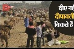here the donkeys fair is held on deepawali