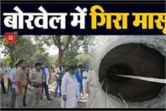 innocent fell in a borewell in niwari