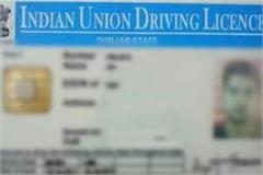 special drive to create digital driving license in punjab