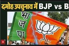 bjp torn apart before damoh by election
