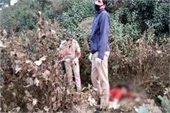 deadbody of woman found n bushes