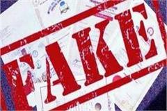 private university fake degree case