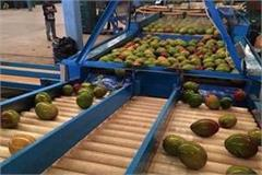mango pack house to be built in pm city kashi and amroha