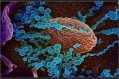 new coronavirus strai knocked in up