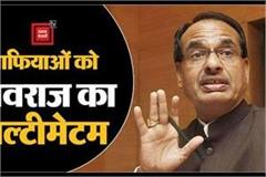 shivraj government hardened on mafia