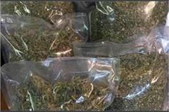 dri seizes hemp of rs 2 95 crore from train