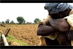 due to mismatch accounts 45 thousand farmers did not get the honor fund