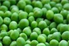 snowfall increases vegetable prices in shimla