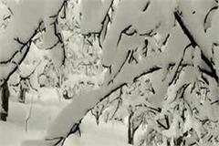 heavy snowfall in himachal