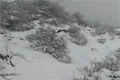 snow starts in chudhar see a huge in temperature pics