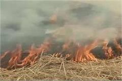 140 acres straw stoned suspicious circumstances farmers lost lakhs rupees