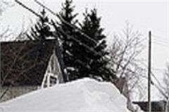 snowfall in himachal created trouble for people