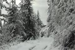 fresh snowfall in himachal