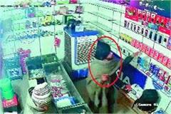 expensive mobile hobby made thief cctv caught theft