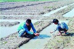 meteorological department warns farmers of sleep possibility rain