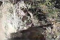 mountains fell on footbridge in ashwani khad