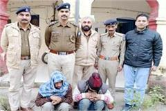 2 brother arrested in illegal tree felling case