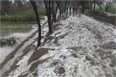 after heavy hail shimla becomes gohana
