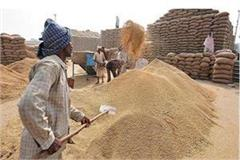 big relief farmers mp govt extends registration date wheat purchase