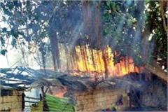 tragic accident 3 child family jhabua gujarat wages burnt alive due fire hut