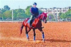 jauhar will show horsemen from across the country in police equestrian