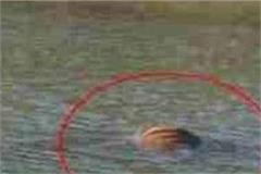 dead body found in floating water