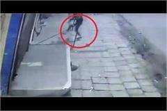 thieves crack locks of three shops