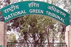 ngt reprimands haryana government for cutting trees in bhondsi village