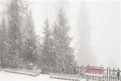 snowfall in kufri rohru