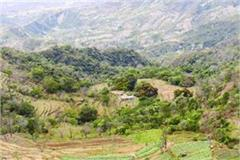 laws on the lines of himachal in morni outsiders could not buy land