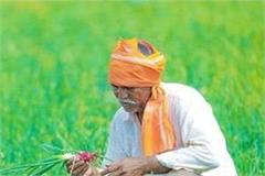 congress on the foot of the village to fumble the pulse of the farmers