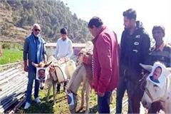 photos of water power minister mla and former mla put on donkeys