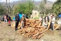 depot of contractor seized in illegal felling case 3 accused on police remand