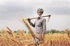 create an e pass like this for carrying wheat mandi