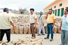 so far 14 148 mt wheat procured in mandis of this district of haryana