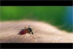 93 percent reduction in malaria cases in a year