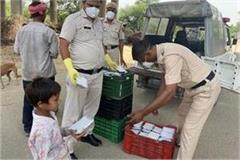 corona warriors of haryana police set in the arena during lockdown