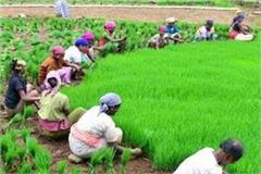 farmers of punjab will get 2000 rupees in the first week of april