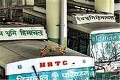 breaking  9 buses of hrtc left for parota from kota to kota