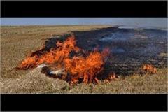 burning stubble in corona epidemic may increase risk