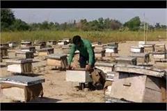 farmer rajkumar is delivering honey from door to door