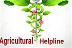 solan farmer agricultural helpline started