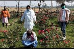 farmers cultivating flowers have been ruined since lockdown