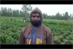 lockdown unseasonal rains increased farmers  problems