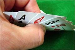 bjp leader angural gambling