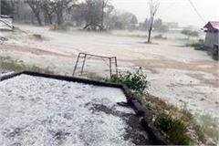 70 percent crop destroyed due to rain and hail