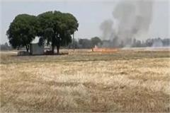 video of burning of residue in the fields has been done on social media