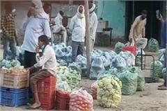 illegal vegetable vegetable market licensee vendors protest protest warning