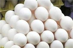 egg of 5 is being sold for 3 rupees egg traders worried over