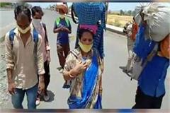 mp govt arranges buses foot laborers mp govt leave up rajasthan border